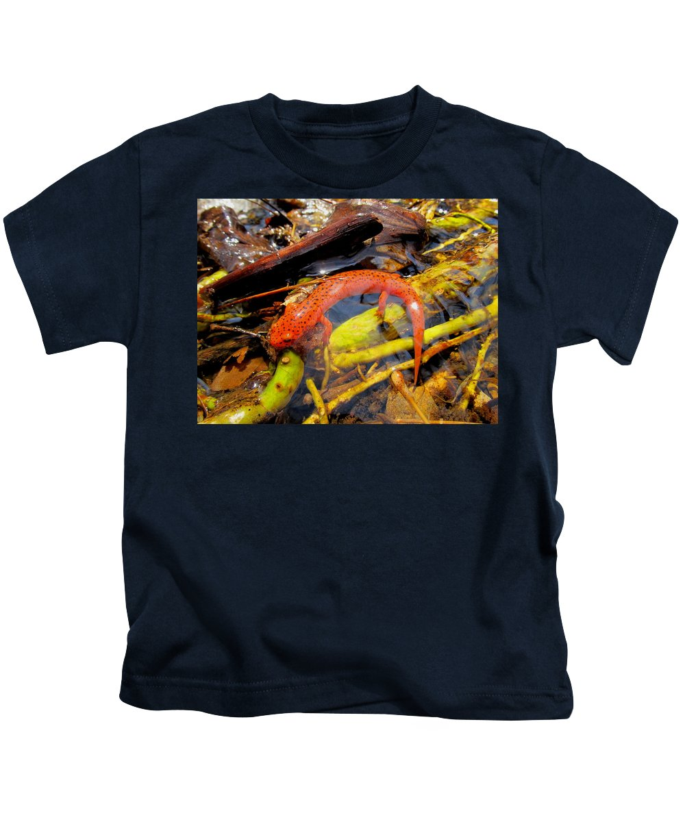 Northern Red Salamander Nature Prints Maryland Appalachian Amphibians Orange Salamander Streams Creek Brook Aquatic Life Water Quality Kids T-Shirt featuring the photograph Northern Red Brook by Joshua Bales