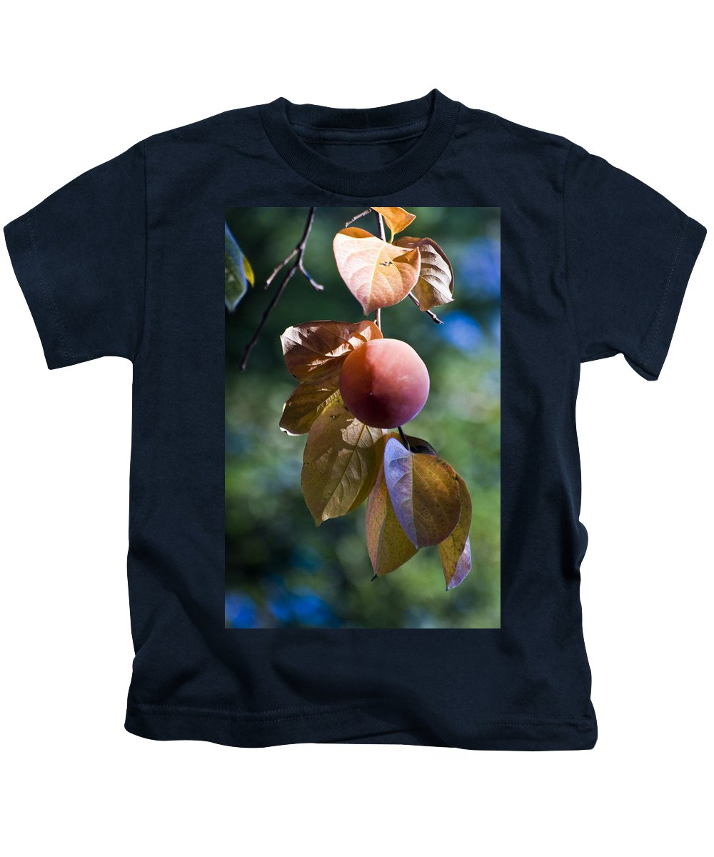 Trees Kids T-Shirt featuring the photograph Persimmon Tree by Norman Andrus