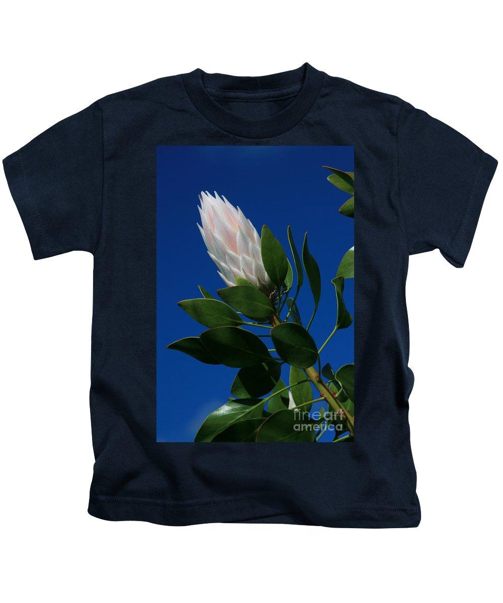 Aloha Kids T-Shirt featuring the photograph Pink King Protea Kula Maui Hawaii by Sharon Mau
