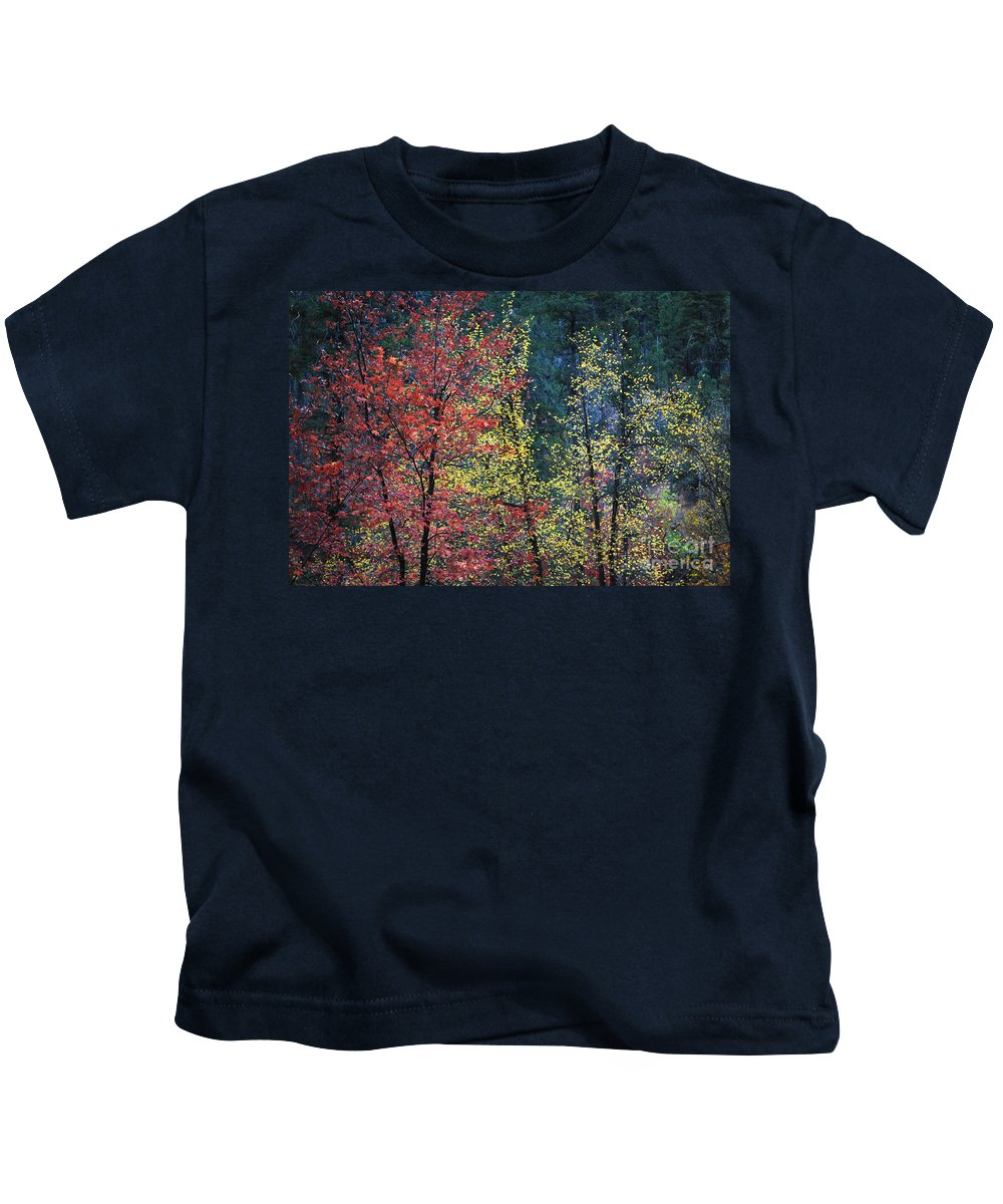 Landscape Kids T-Shirt featuring the photograph Red And Yellow Leaves Abstract Horizontal Number 1 by Heather Kirk