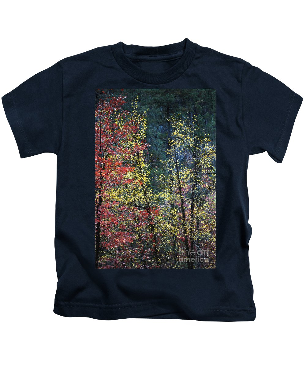 Landscape Kids T-Shirt featuring the photograph Red And Yellow Leaves Abstract Vertical Number 2 by Heather Kirk