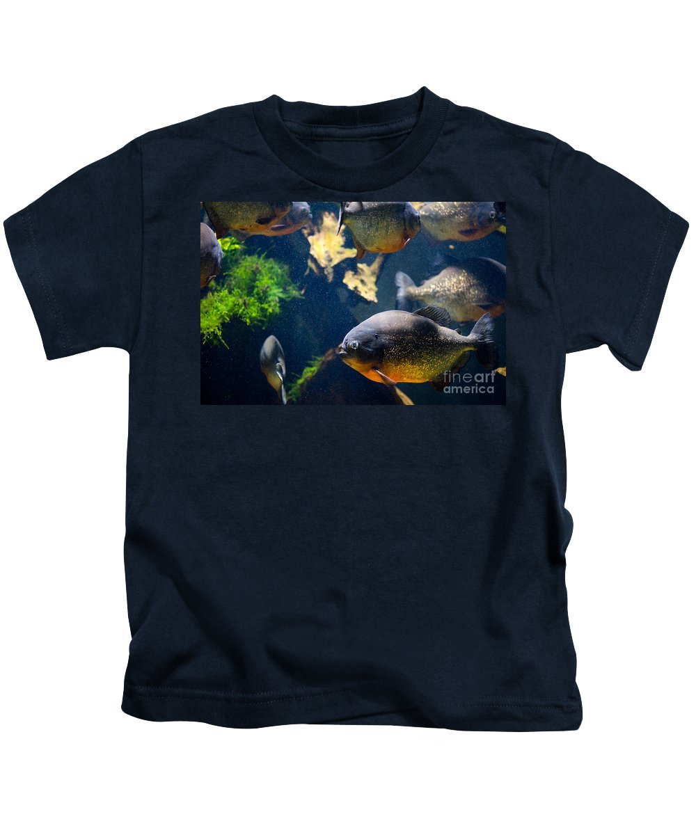Piranha Kids T-Shirt featuring the photograph Red Bellied Piranha Fishes by Arletta Cwalina