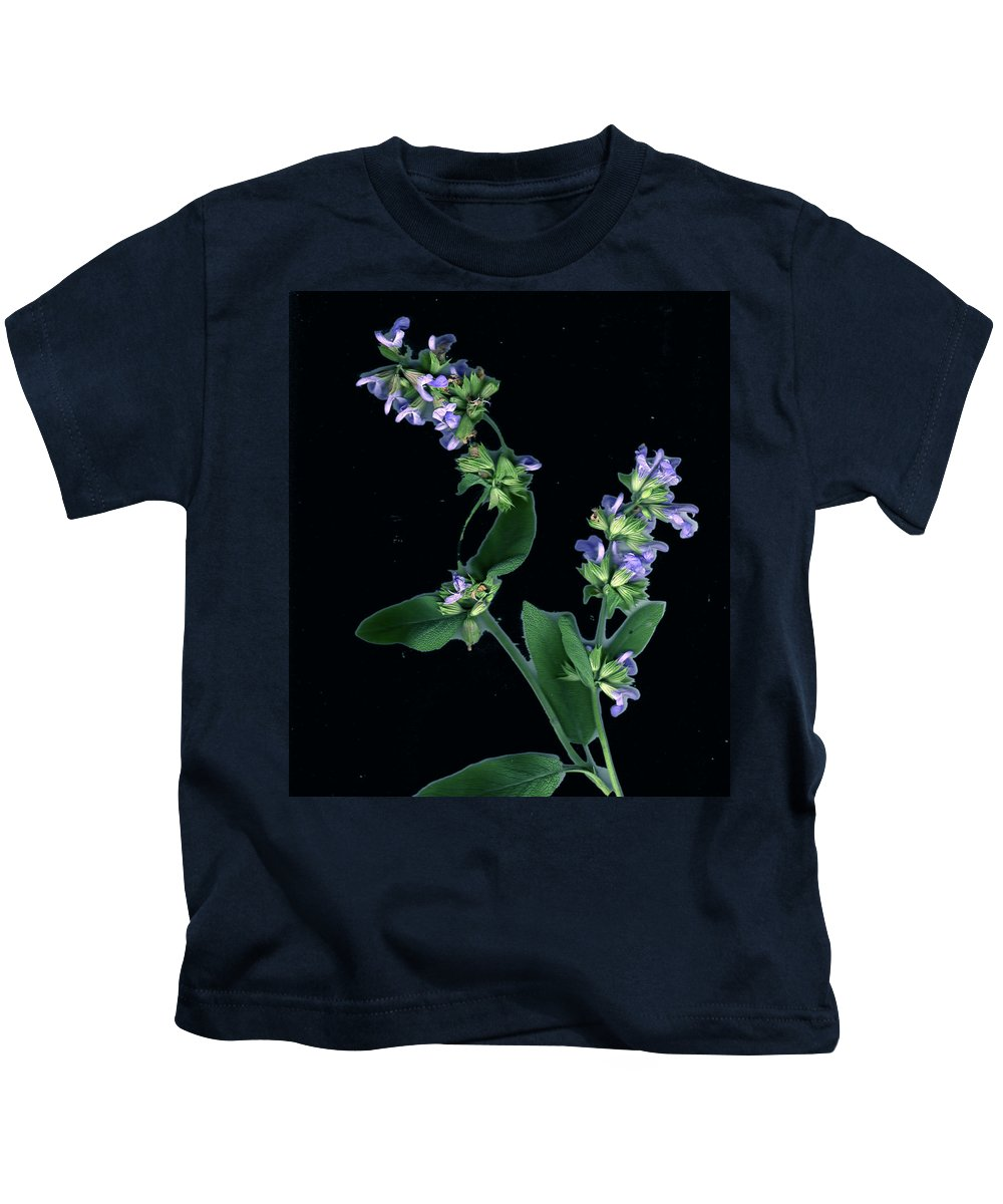 Kids T-Shirt featuring the photograph Sage Blossom by Wayne Potrafka