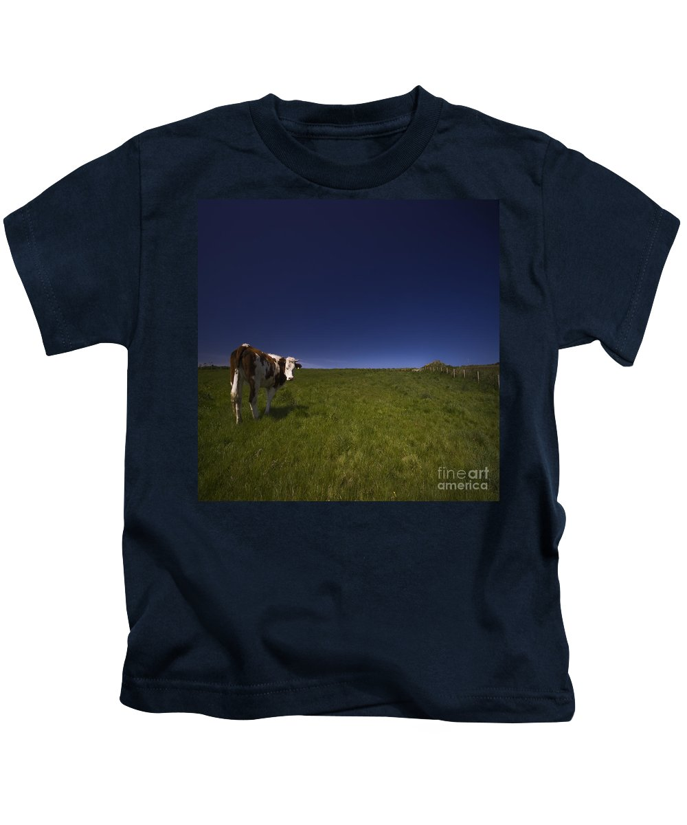 Cow Kids T-Shirt featuring the photograph The Moody Cow by Angel Ciesniarska