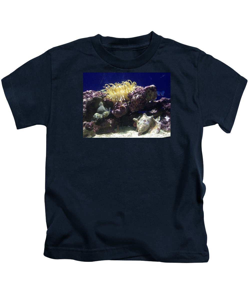 Ocean Kids T-Shirt featuring the photograph Under The Sea by Gina Sullivan