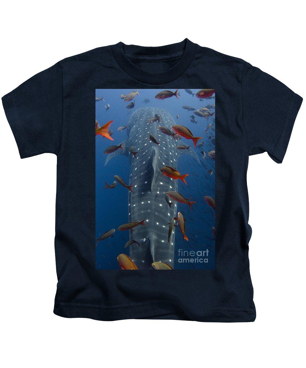 Rhincodon Typus Kids T-Shirts