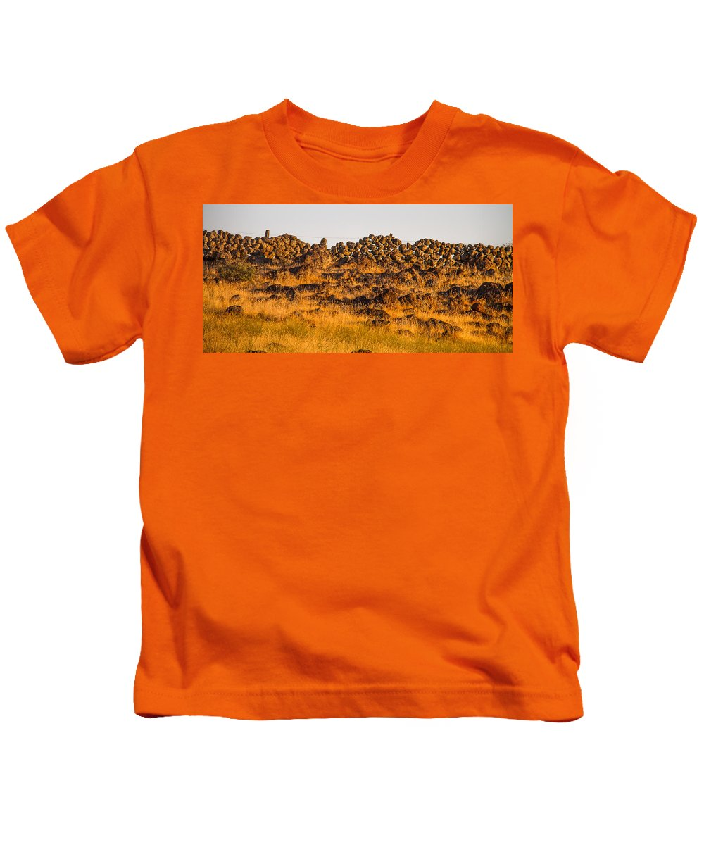 History Kids T-Shirt featuring the photograph 1800s Chinese Rock Fence by Brian Williamson
