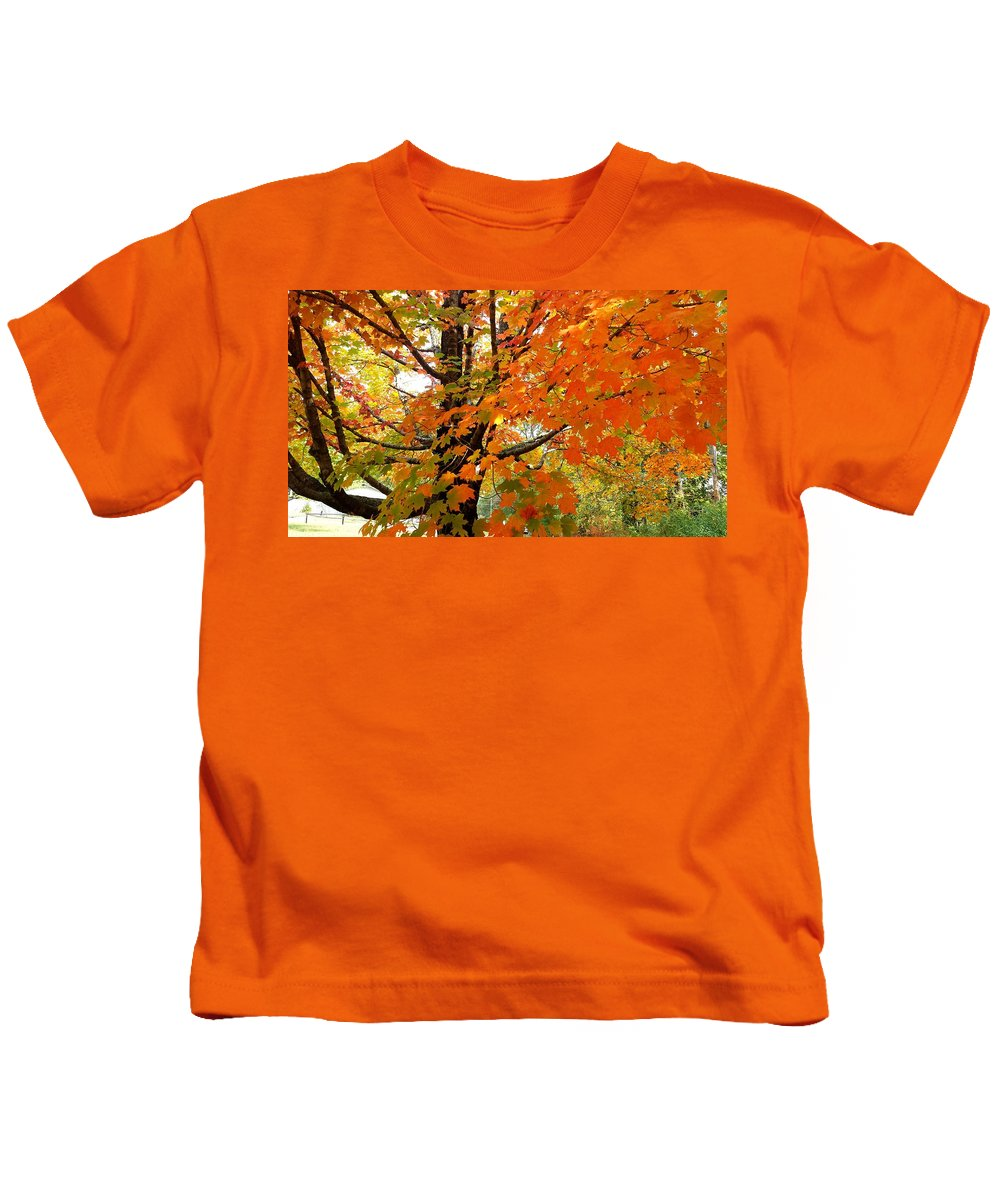 Fall Kids T-Shirt featuring the photograph Fall Explosion Of Color by Kenny Glover