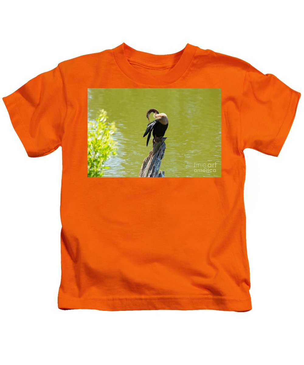 Anhinga Kids T-Shirt featuring the photograph Anhinga Grooming Feathers by Louise Heusinkveld