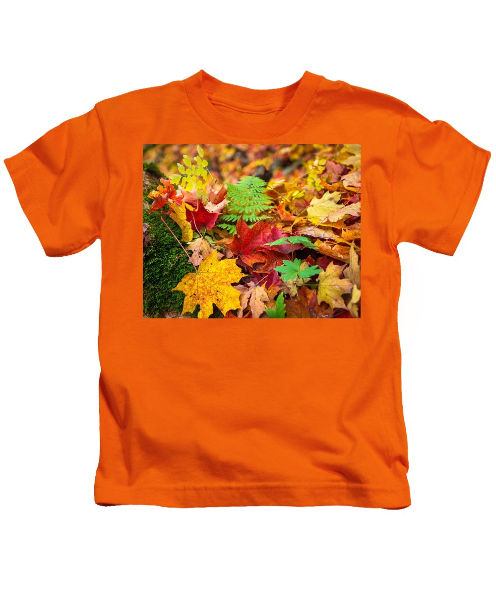 Fall Kids T-Shirt featuring the photograph Autumn Leaf Salad by Bill Pevlor