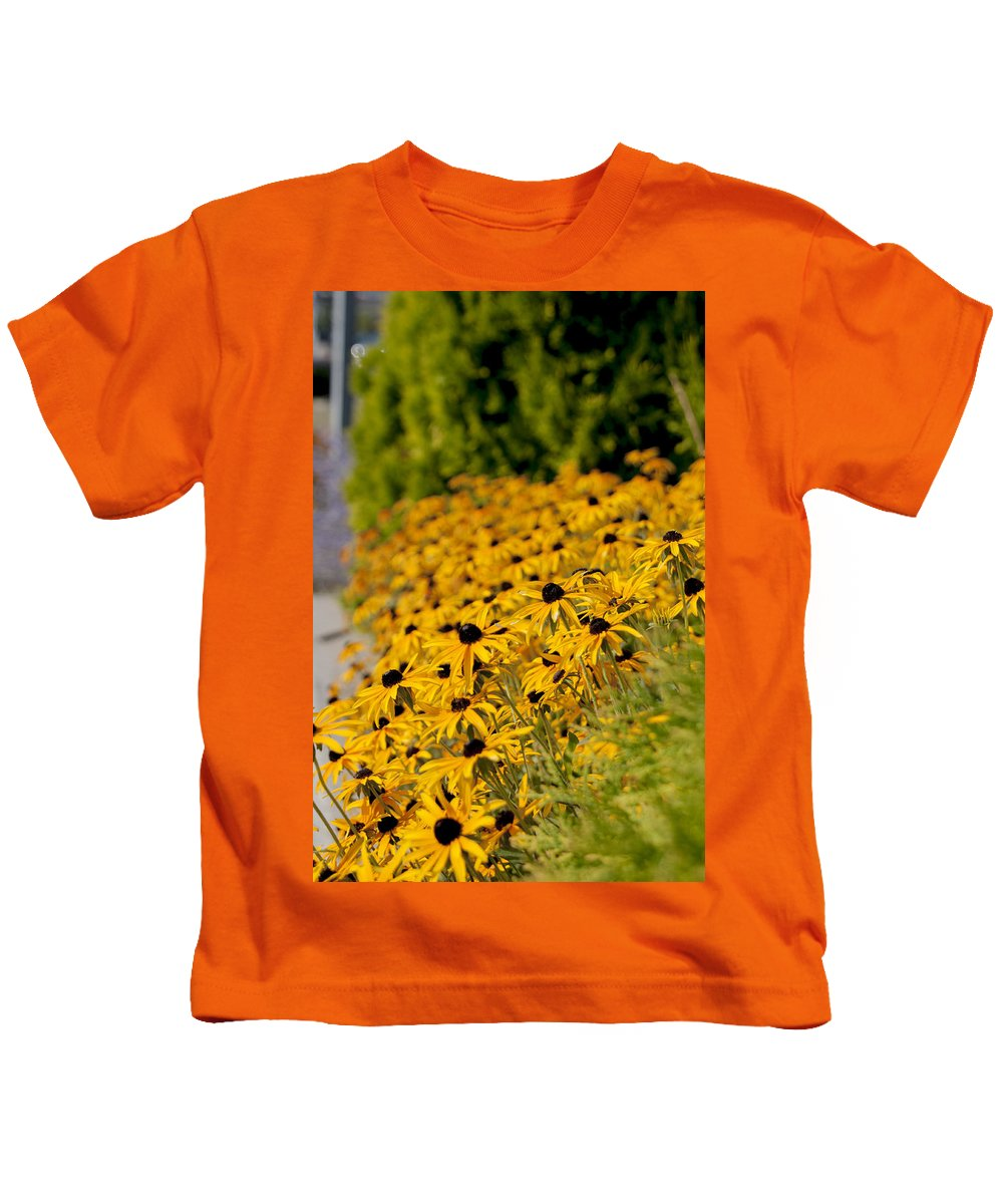 Daisies Kids T-Shirt featuring the photograph Black Eyed Susans by Jayne Gohr