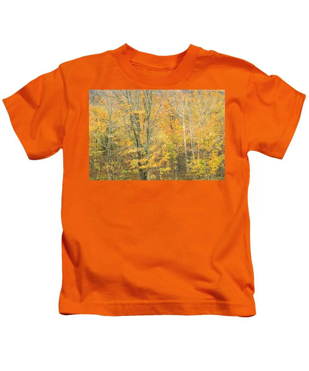 Maine Kids T-Shirt featuring the photograph Colorful Fall Trees In Maine by Keith Webber Jr