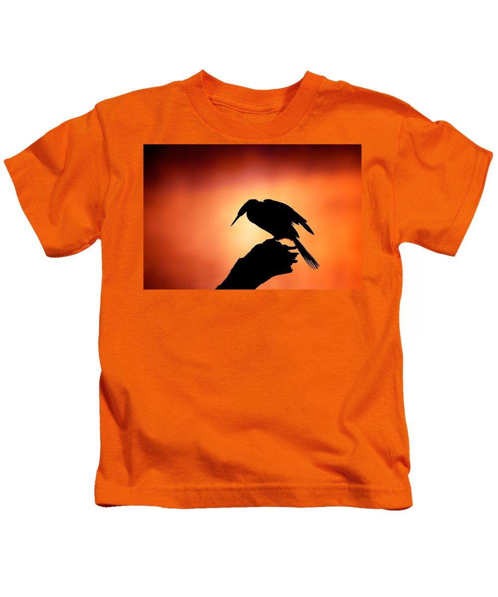Anhinga Kids T-Shirts