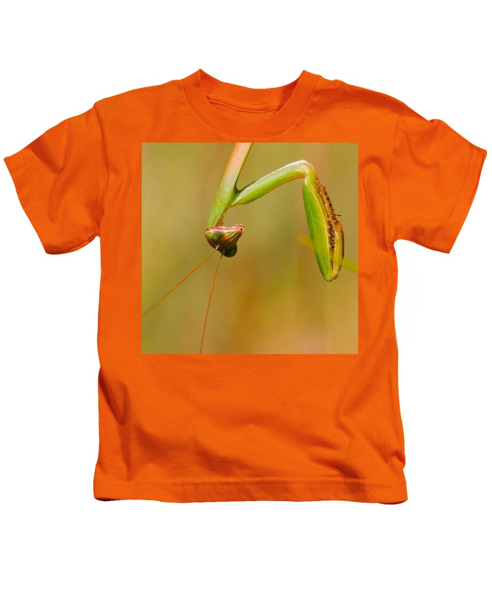 Praying Mantis Kids T-Shirt featuring the photograph Do You Mind? by Amy Porter