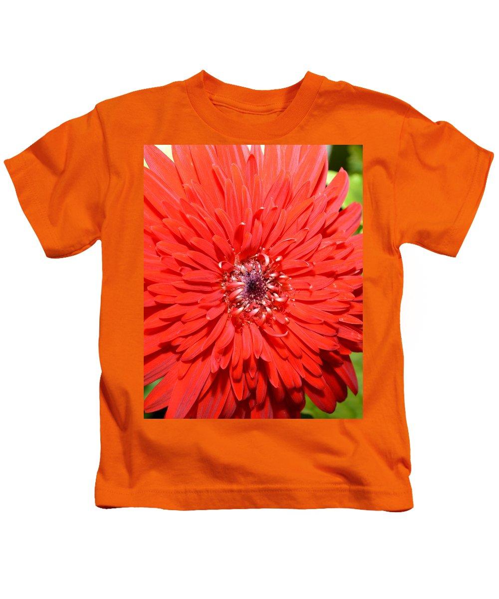 Gerber Kids T-Shirt featuring the photograph Dsc1516z-006 by Kimberlie Gerner