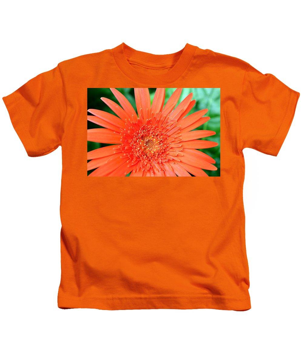 Gerber Kids T-Shirt featuring the photograph Dsc451d by Kimberlie Gerner