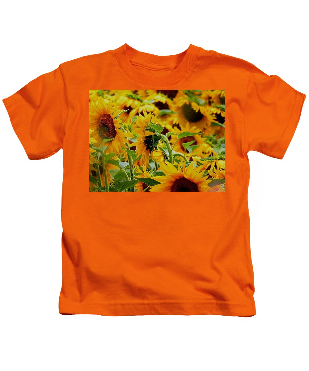 Kids T-Shirt featuring the photograph Giant Sunflowers by Nikki Keep