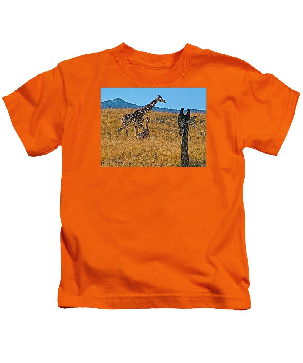 Giraffe Family In Living Desert In Palm Desert Kids T-Shirt featuring the photograph Giraffe Family In Living Desert Museum In Palm Desert-california by Ruth Hager