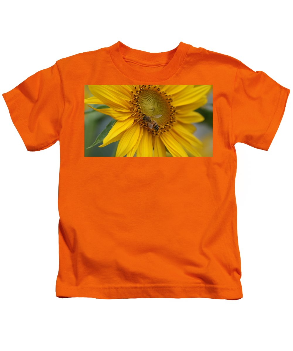 Honey Bee Kids T-Shirt featuring the photograph Honey Bee Close Up On Edge Of Sunfower... # by Rob Luzier