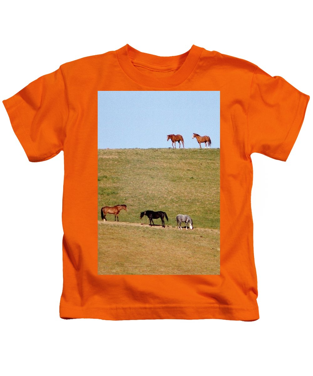 Horses Kids T-Shirt featuring the photograph Horses Of Hayward by Elaine Burlew