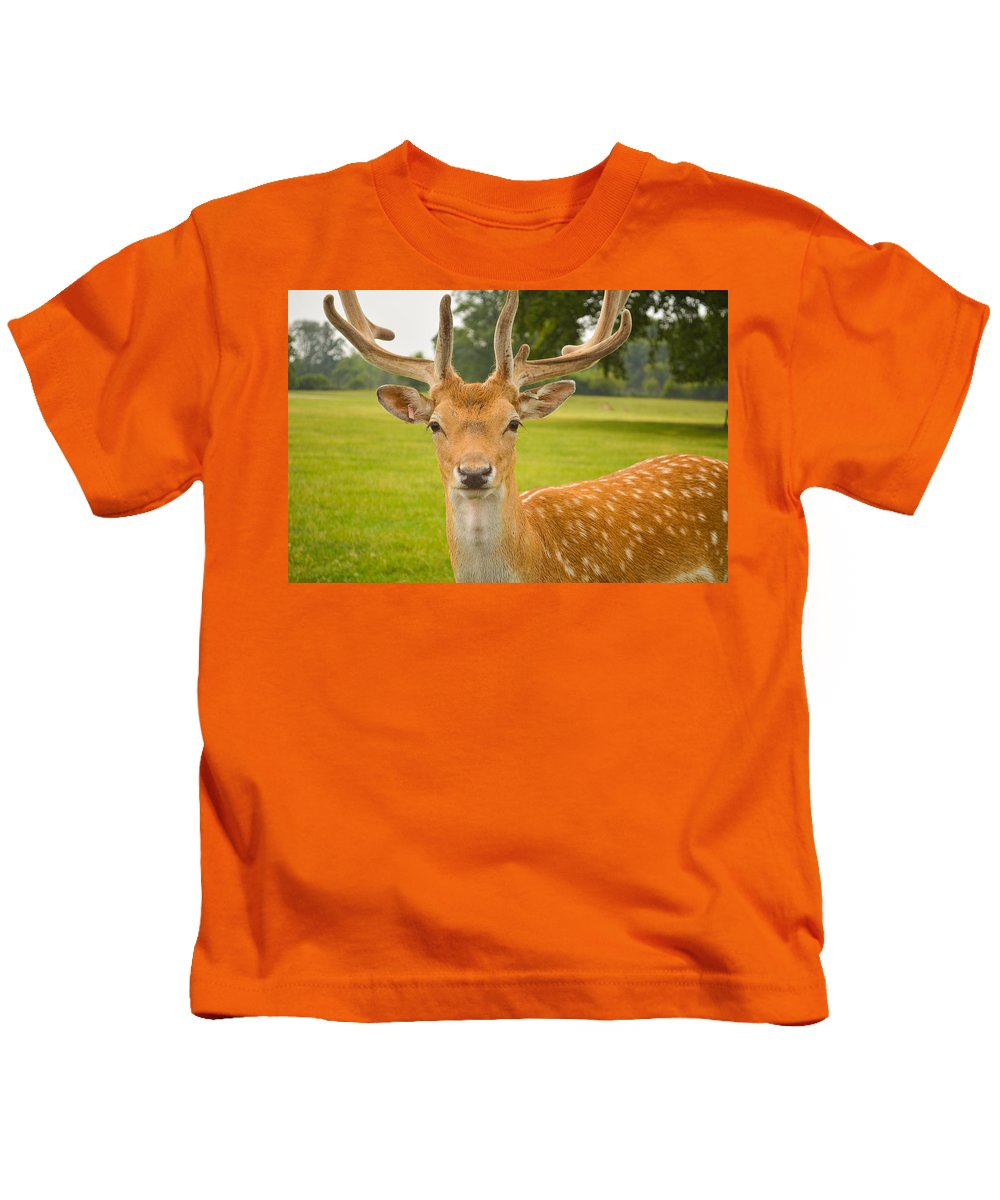 Deer Kids T-Shirt featuring the photograph King Of The Spotted Deers by Mair Hunt
