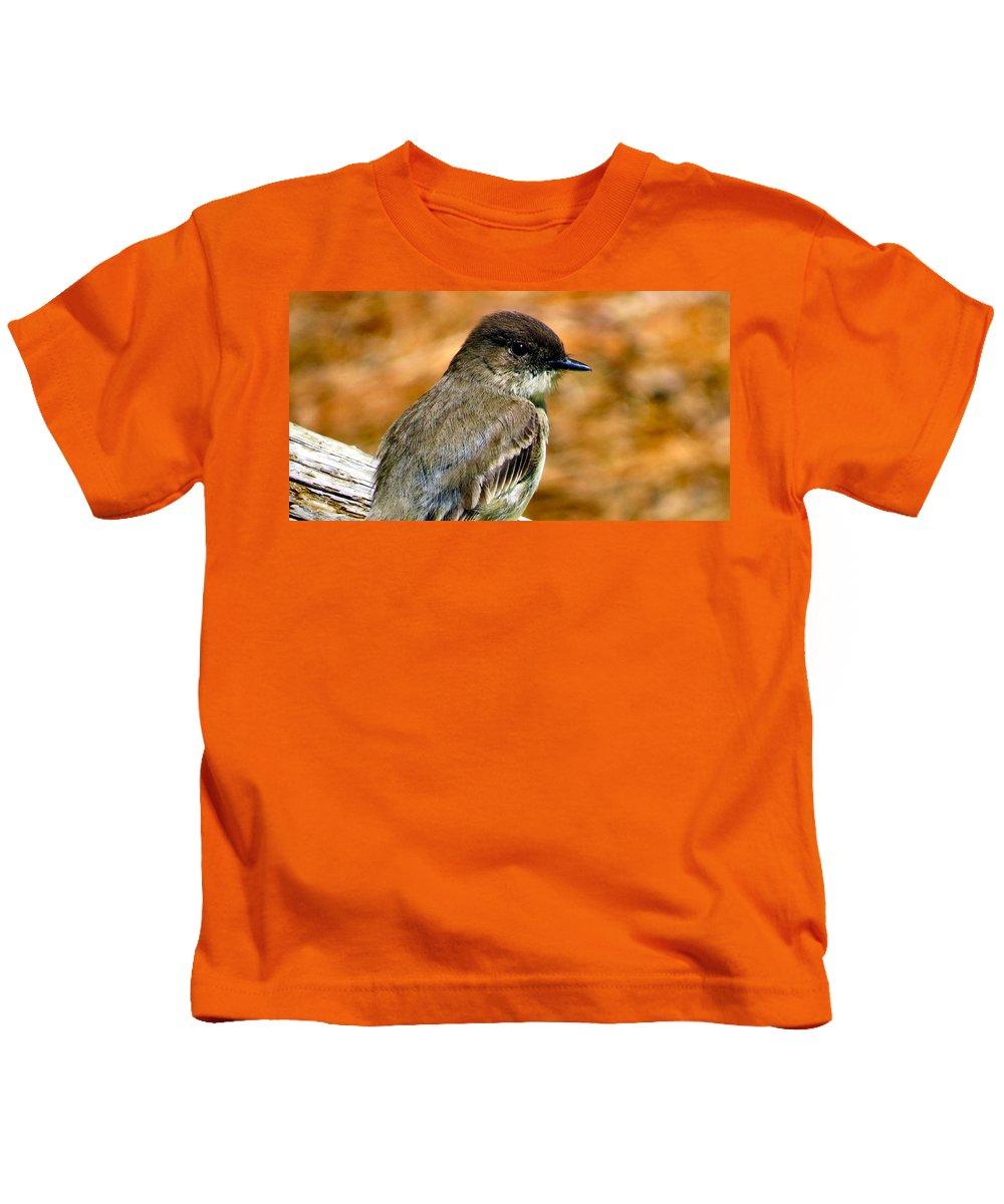 Eastern Kids T-Shirt featuring the photograph Kingbird Chillin by Art Dingo