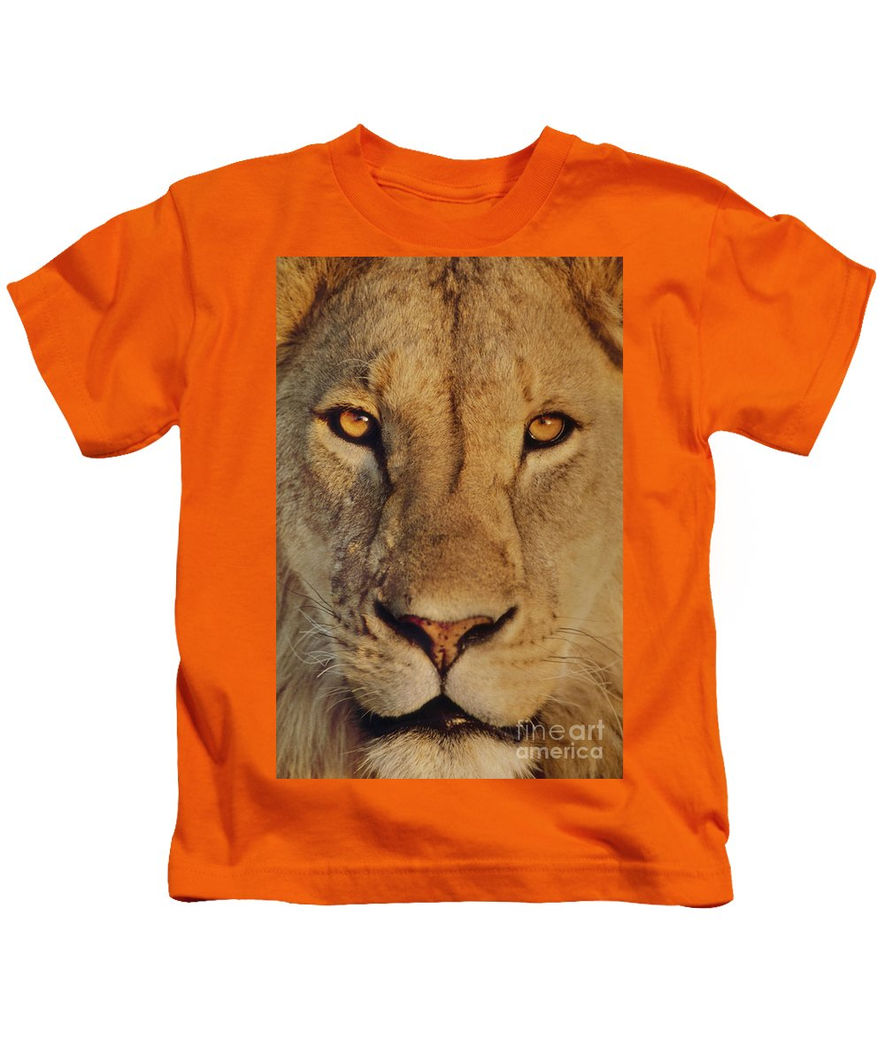 Staring Kids T-Shirt featuring the photograph Lion Face by Frans Lanting MINT Images