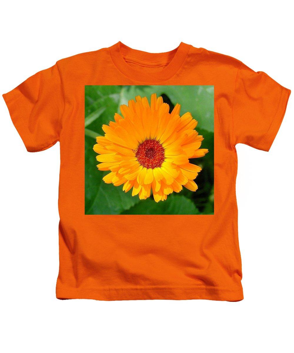 Flower Kids T-Shirt featuring the photograph October's Summer Sunlit Marigold by Taiche Acrylic Art