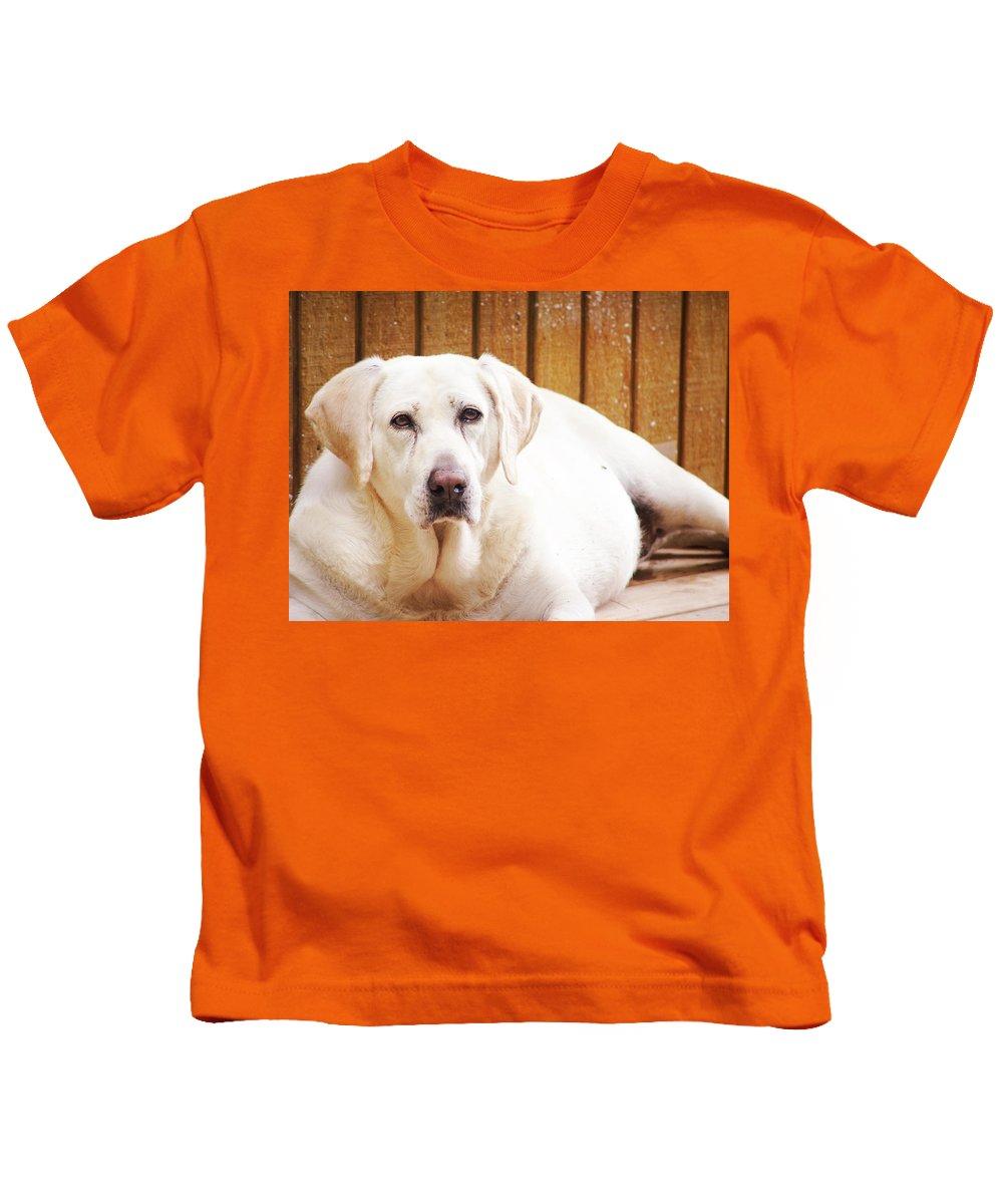 Animals Kids T-Shirt featuring the photograph Old Faithful by Lj Lambert