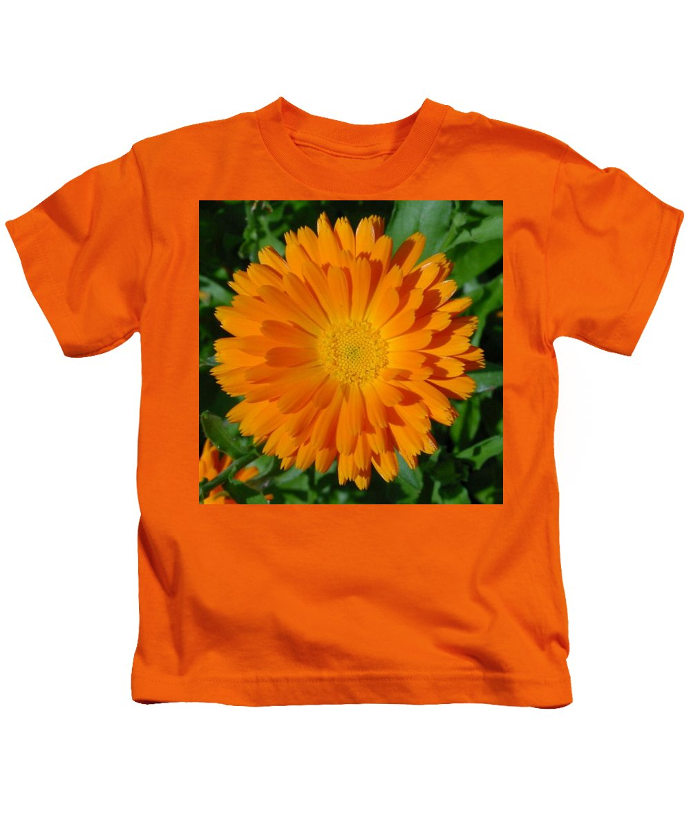 Flower Kids T-Shirt featuring the photograph Orange Marigold Close Up With Garden Background by Taiche Acrylic Art