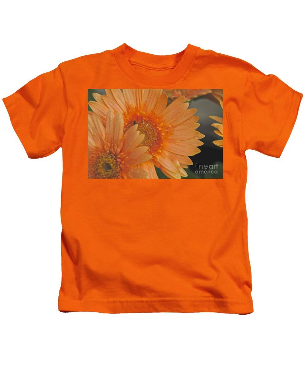 Peach Daisy Kids T-Shirt featuring the photograph Peach Daisy Cluster by William Norton