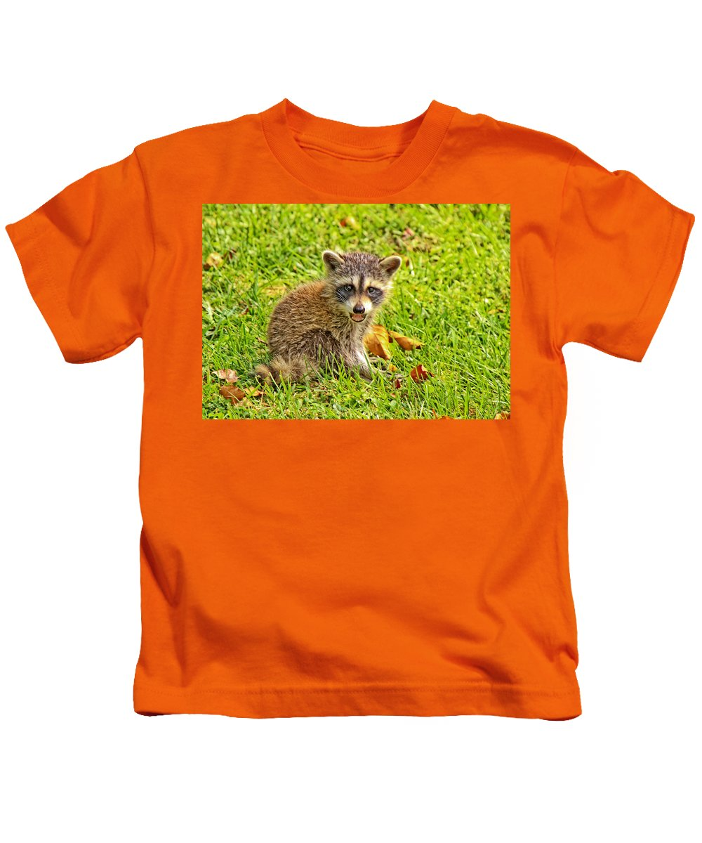 Raccoon Kids T-Shirt featuring the photograph Rocky by David Campbell