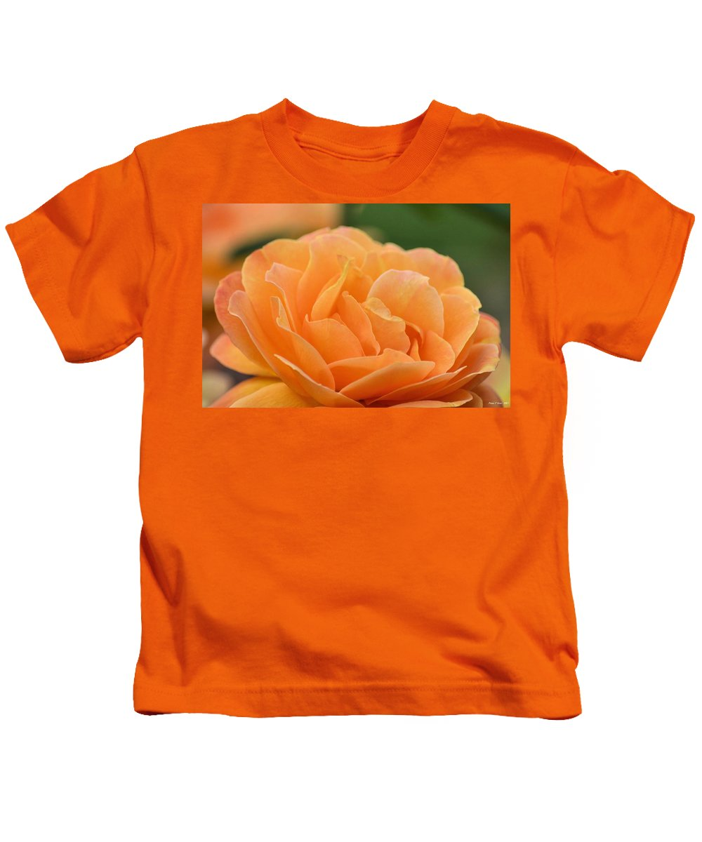 September Rose Kids T-Shirt featuring the photograph September Rose by Maria Urso