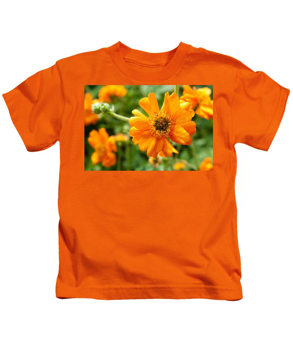 Bloom Kids T-Shirt featuring the photograph Spring Is Here by Zina Zinchik