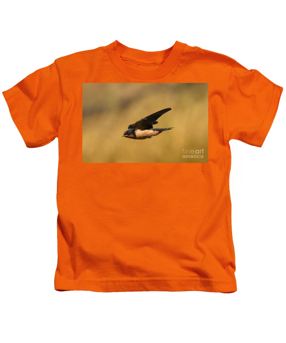 Animal Kids T-Shirt featuring the photograph First Swallow Of Spring by Robert Frederick