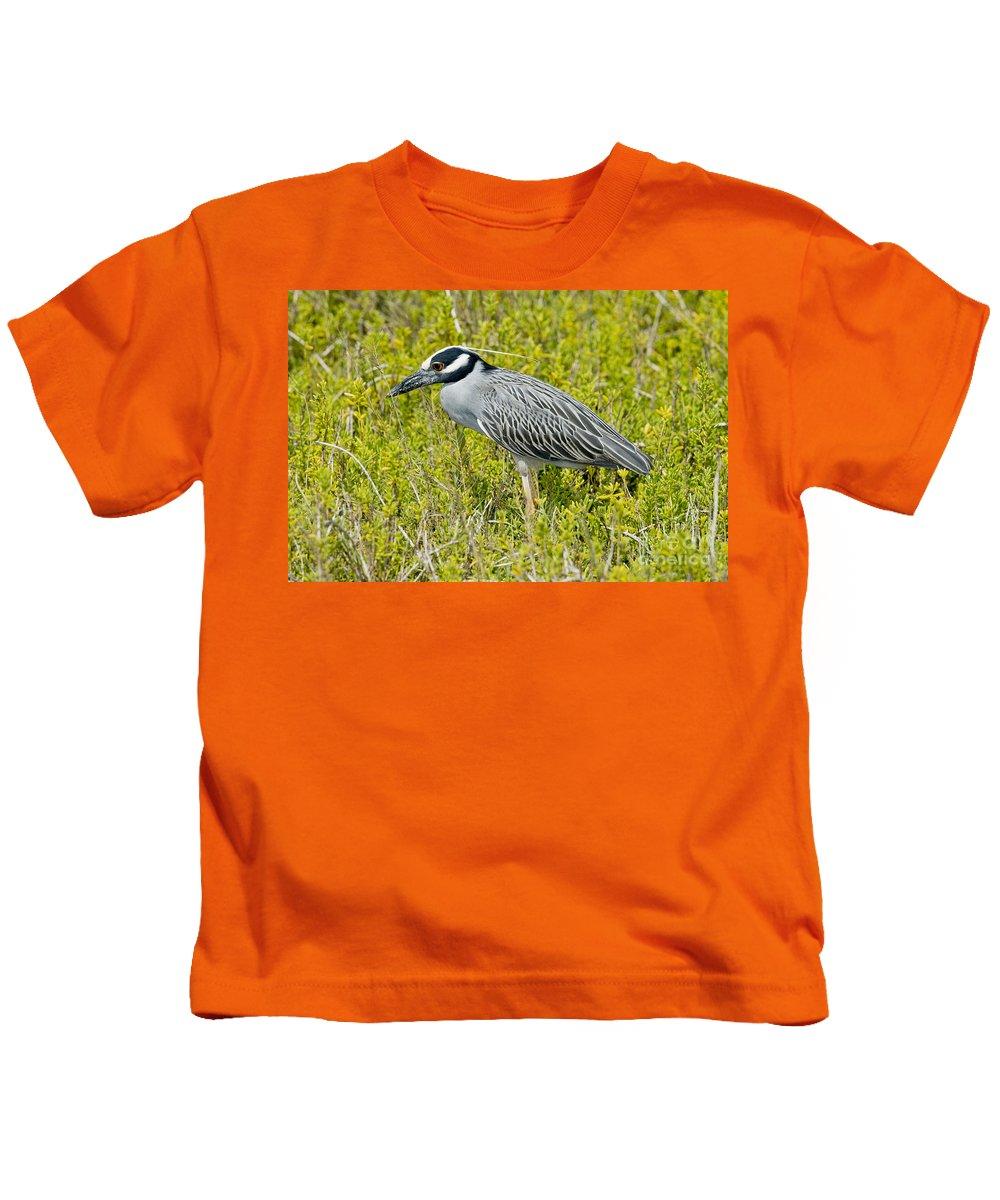 Yellow-crowned Night Heron Kids T-Shirt featuring the photograph Yellow-crowned Night Heron by Anthony Mercieca