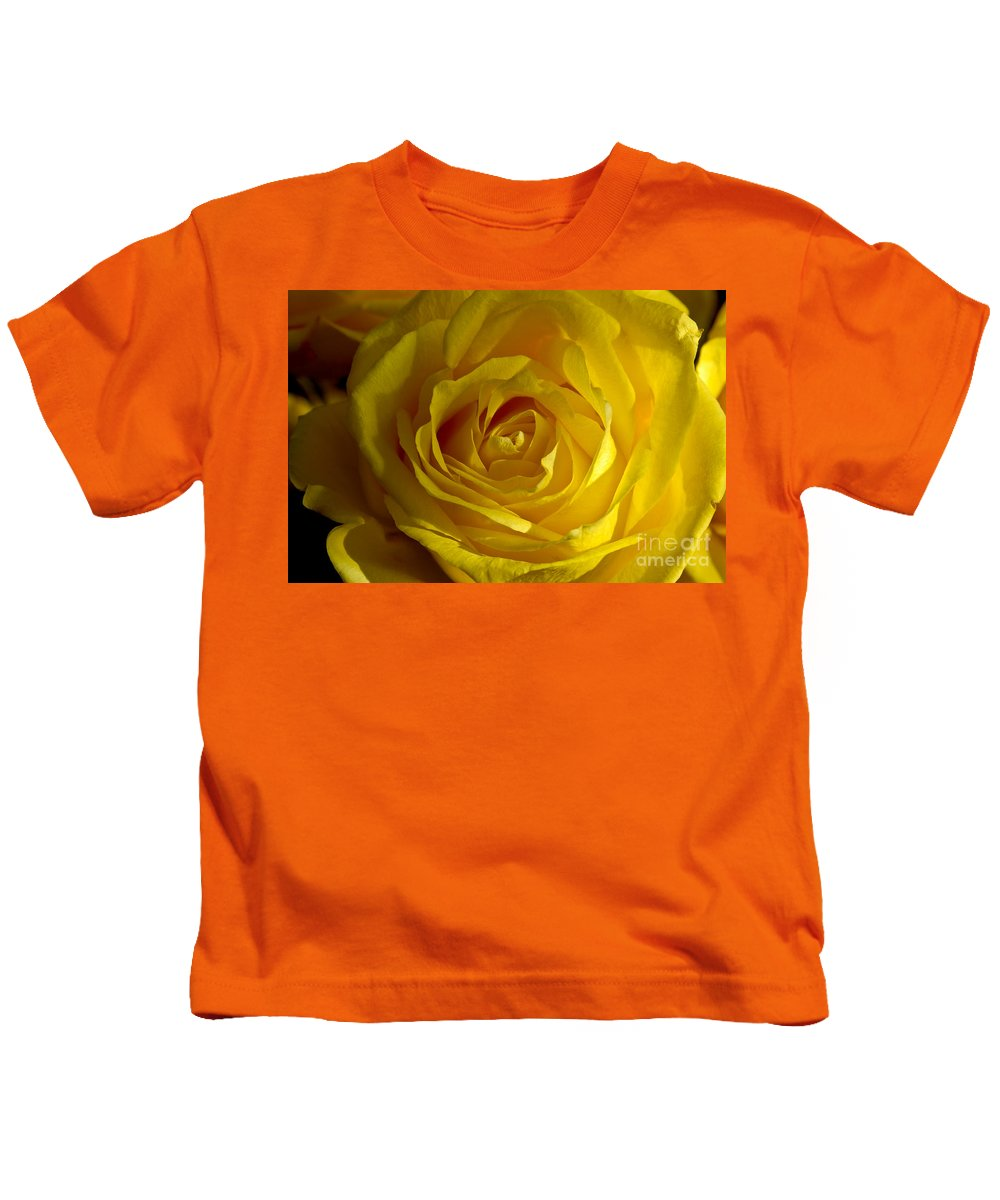 Yellow Kids T-Shirt featuring the photograph Yellow Rose by Anthony Sacco