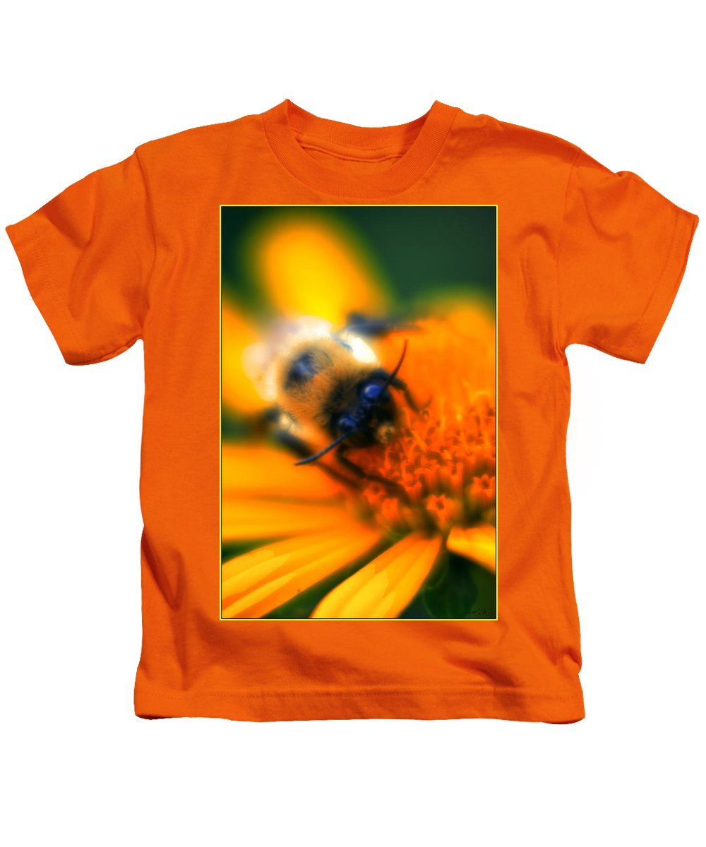 Kids T-Shirt featuring the photograph 007 Sleeping Bee Series Now Awake  Ovo by Michael Frank Jr