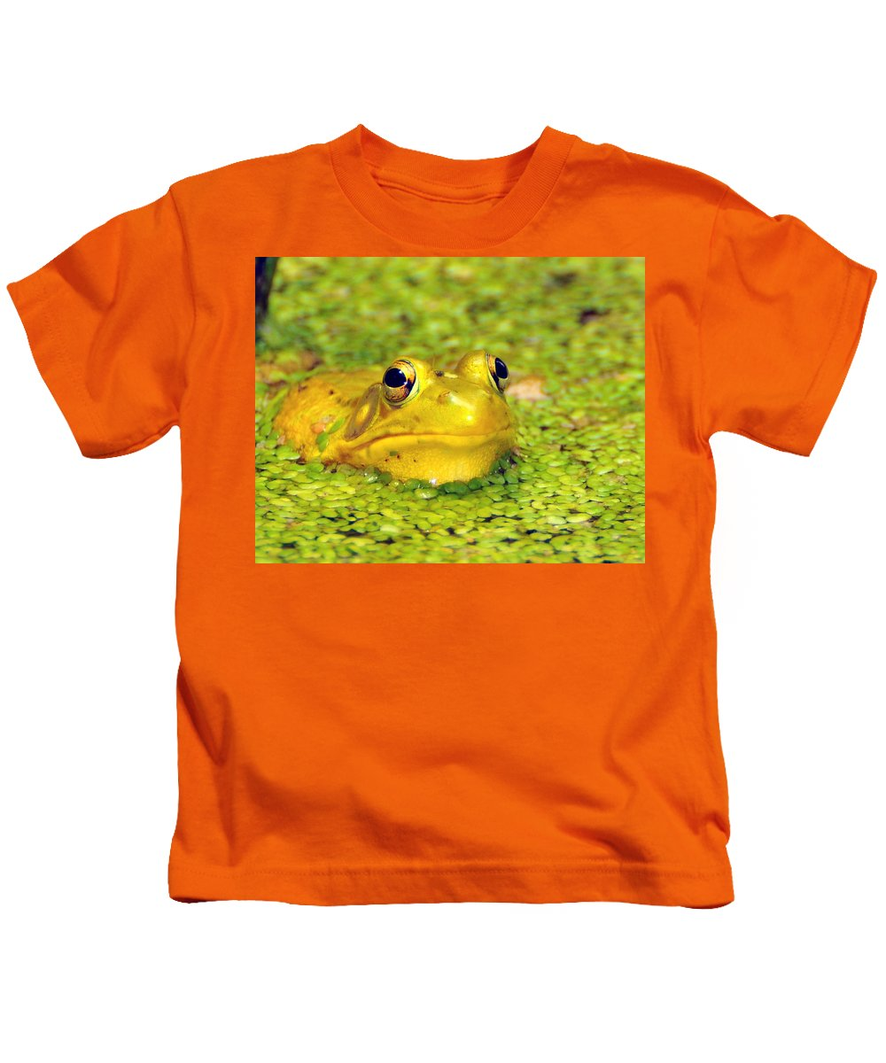 Yellow Bullfrog Kids T-Shirt featuring the photograph A Yellow Bullfrog by Paul Ward