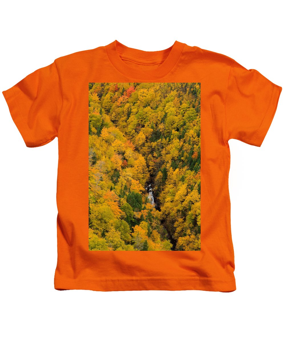 Aerial Image Kids T-Shirt featuring the photograph Autumn Colour And Waterfalls, Cape by John Sylvester