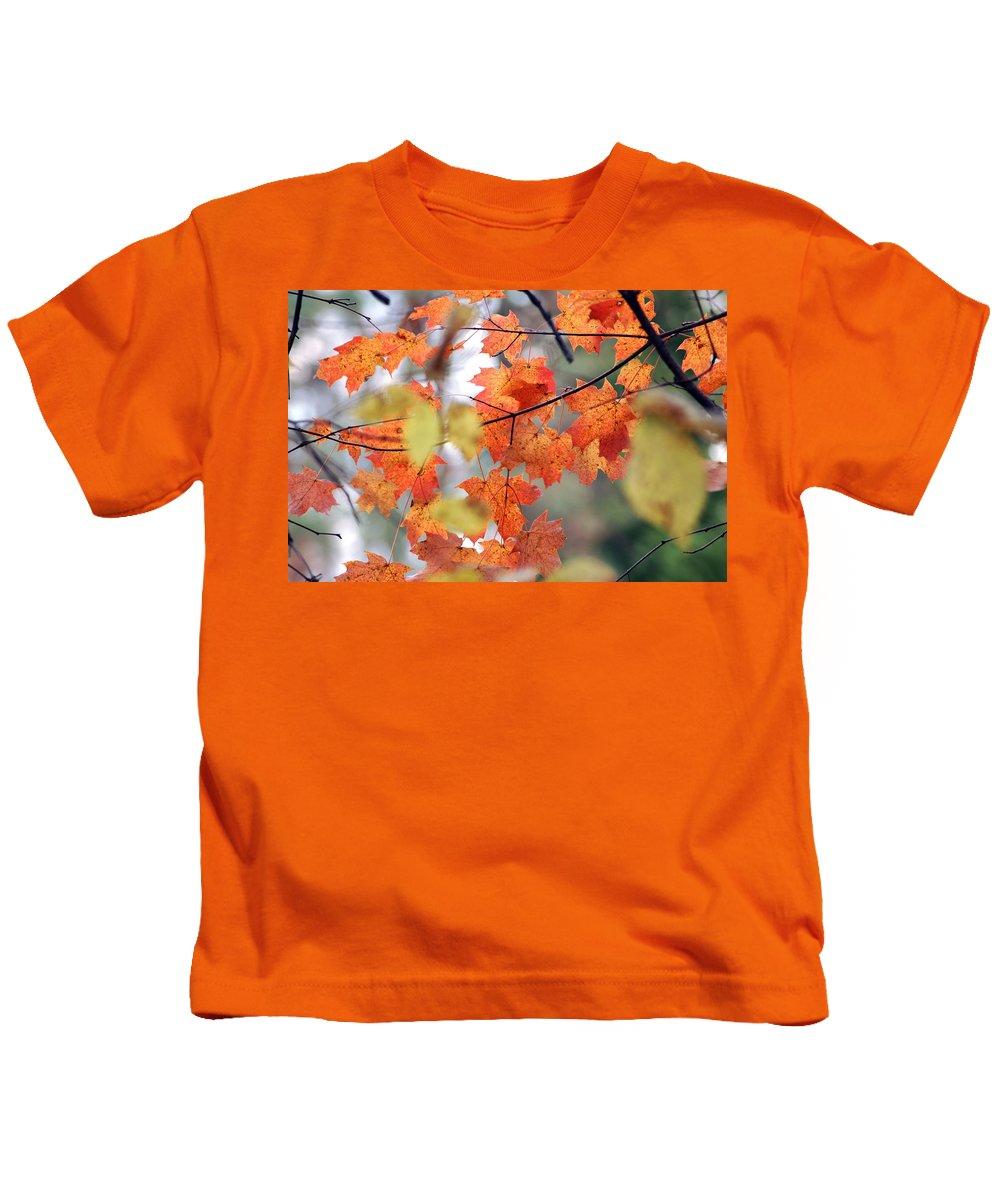 Usa Kids T-Shirt featuring the photograph Autumn Day Dream by LeeAnn McLaneGoetz McLaneGoetzStudioLLCcom