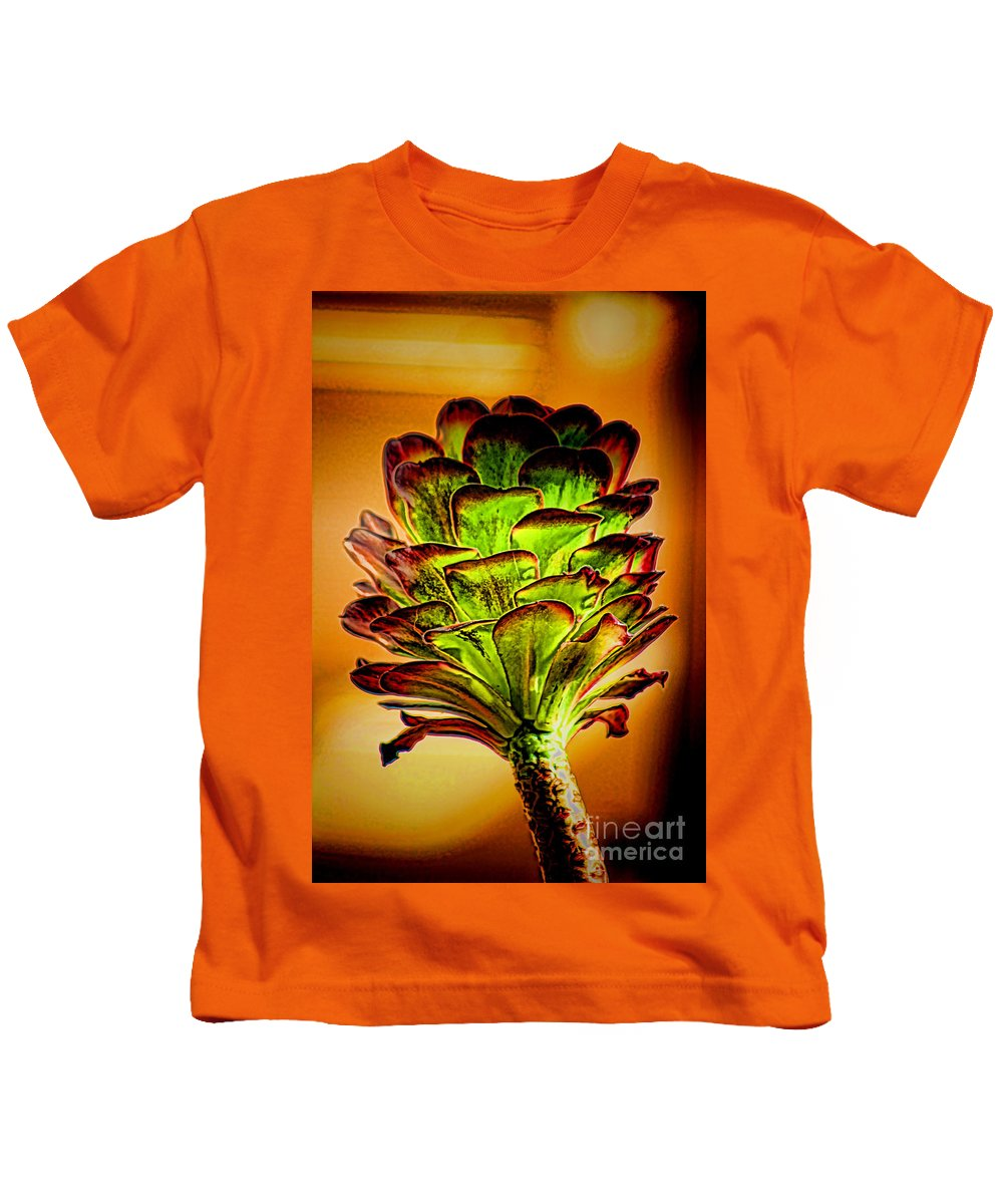 Cactus Arizona Desert Plant Dry Weather Durable Long Growing Up Cactus Arizona Desert Plant Dry Weather Durable Long Growing Up Cactus Arizona Desert Plant Dry Weather Durable Long Growing Up Cactus Arizona Desert Plant Dry Weather Durable Long Growing Up Cactus Arizona Desert Plant Dry Weather Durable Long Growing Up Kids T-Shirt featuring the photograph Cactus Time by RJ Aguilar
