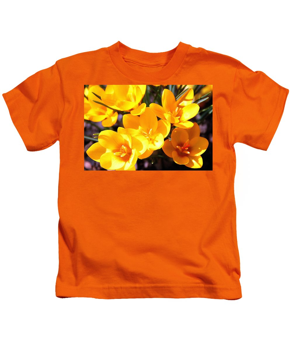 Crocus Kids T-Shirt featuring the photograph Crocuses In Yellow by Laurel Talabere