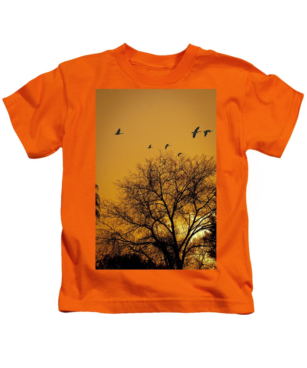 Sunrise Kids T-Shirt featuring the photograph Geese At Sunrise by Jay Hooker