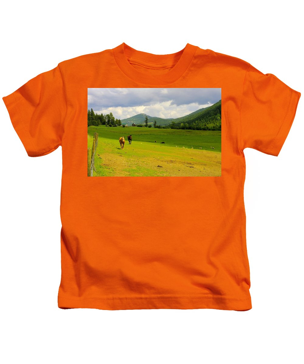 Greenwood Kids T-Shirt featuring the photograph Horse Heaven by John Greaves