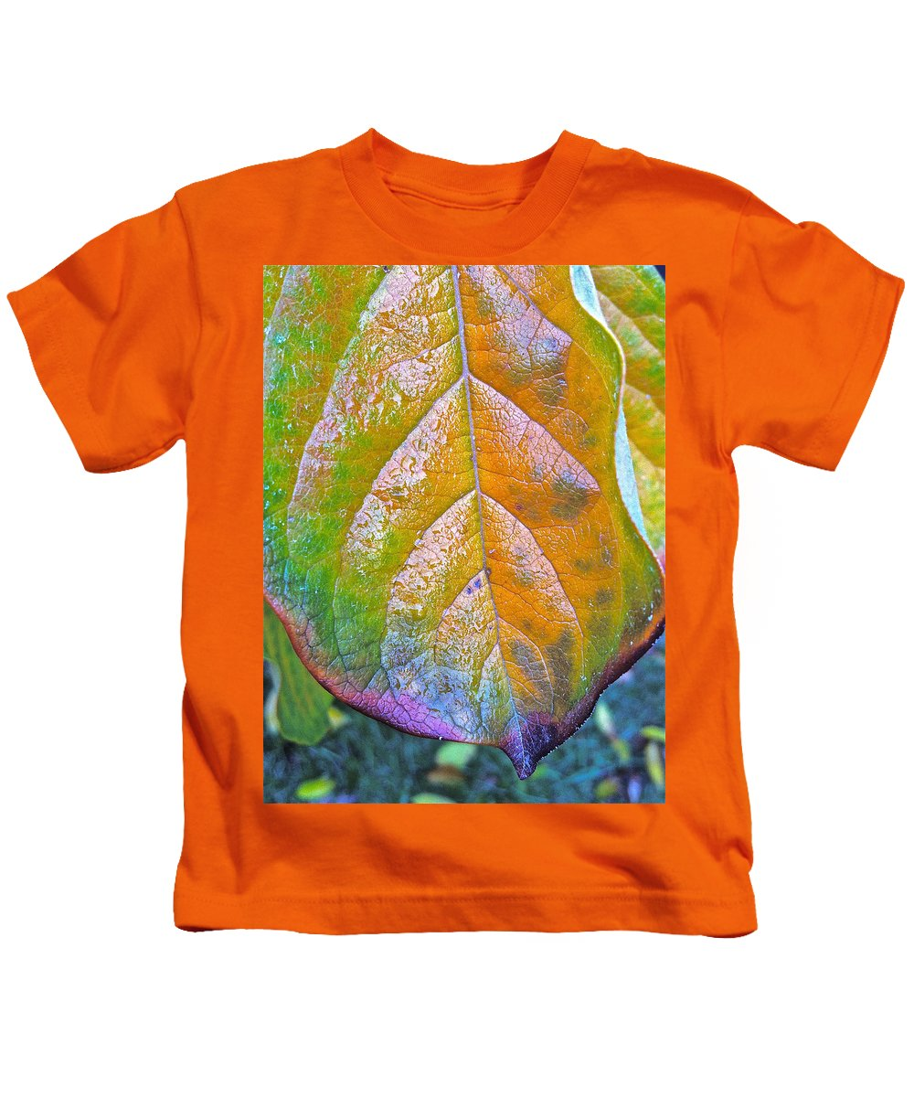 Persimmons Kids T-Shirt featuring the photograph Leaf by Bill Owen