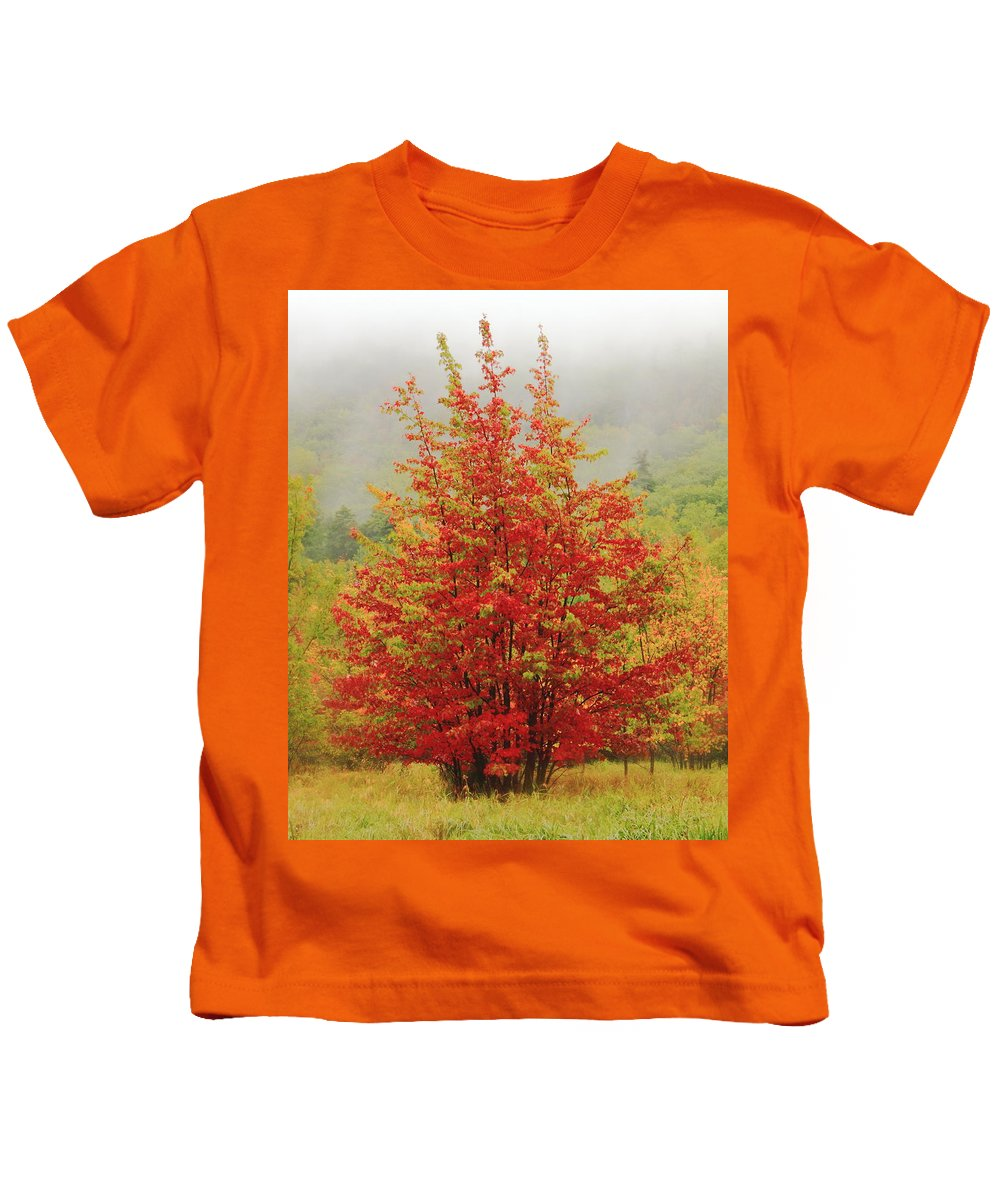 Maples Kids T-Shirt featuring the photograph Maples In The Mist by Roupen Baker