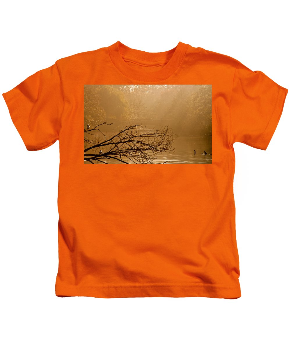Sunlight Kids T-Shirt featuring the photograph Misty Sunbeams by Dawn OConnor