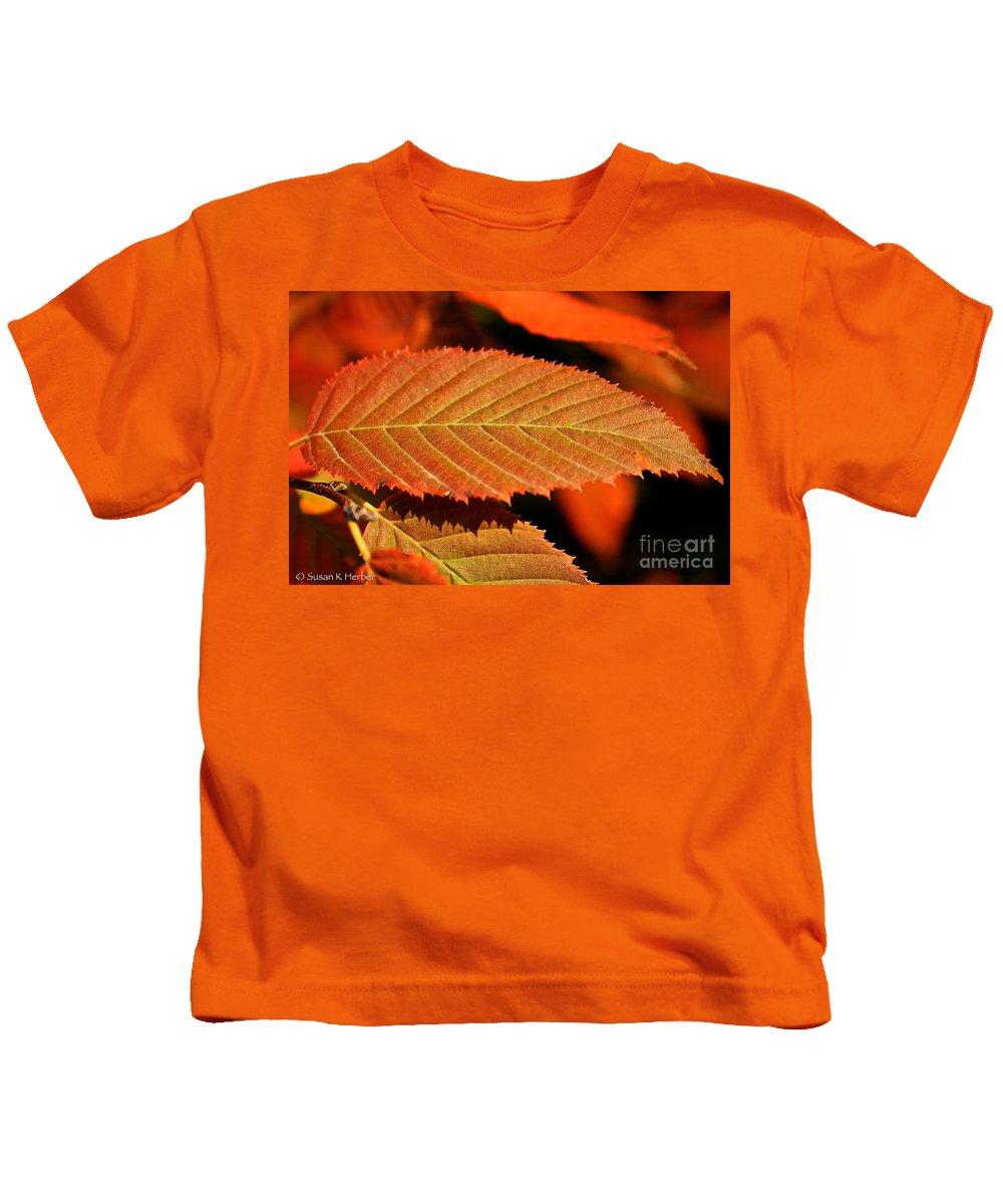 Outdoors Kids T-Shirt featuring the photograph Molten Bronze by Susan Herber