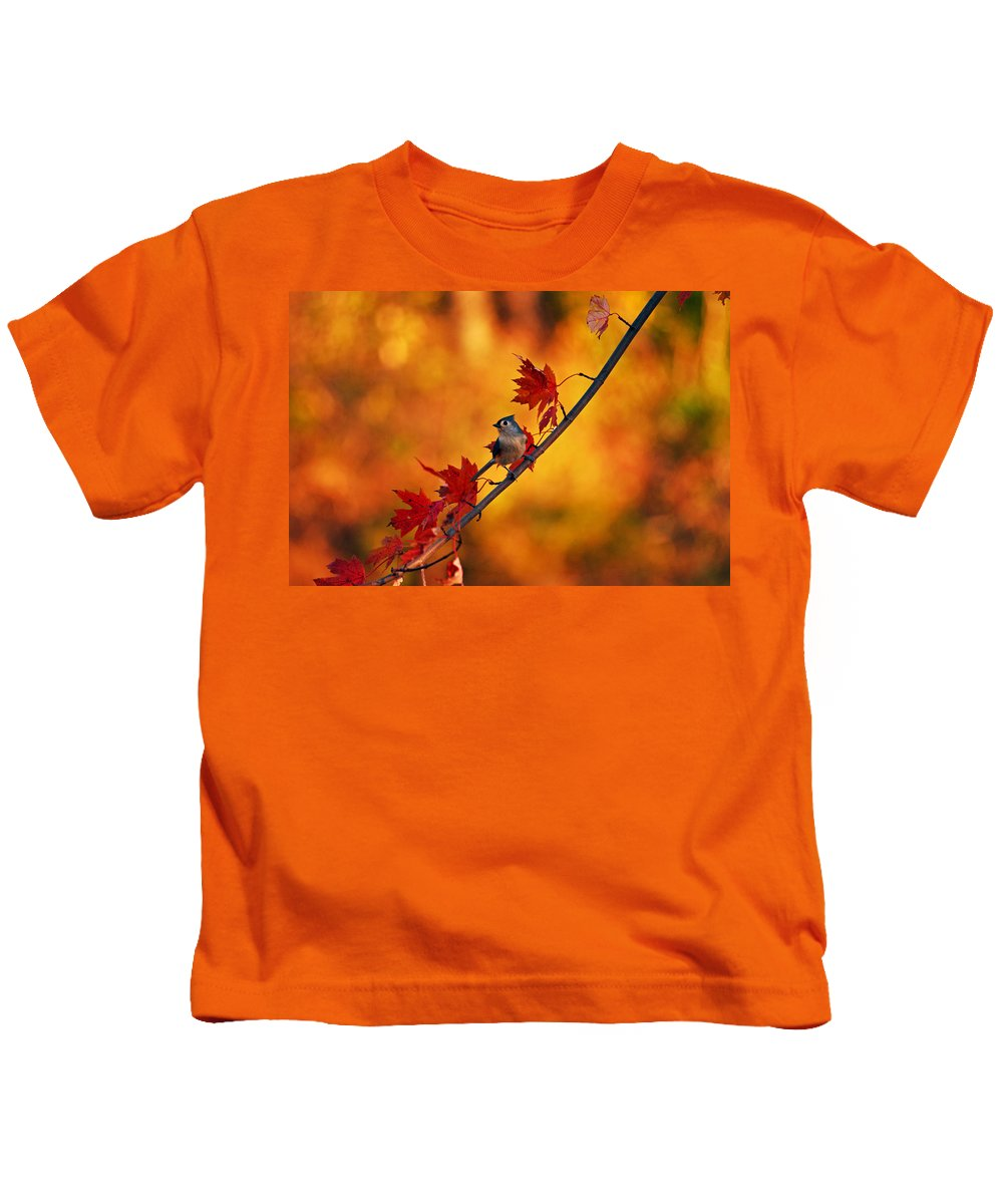Titmouse Kids T-Shirt featuring the photograph One Of These Things Is Not Like The Others by Lori Tambakis